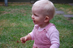 15. Rosie on an egg hunt